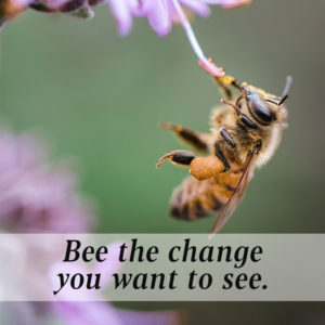 Bee the change you want to see